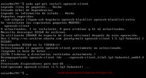 Instalar OpenSSH en Ubuntu Server 9